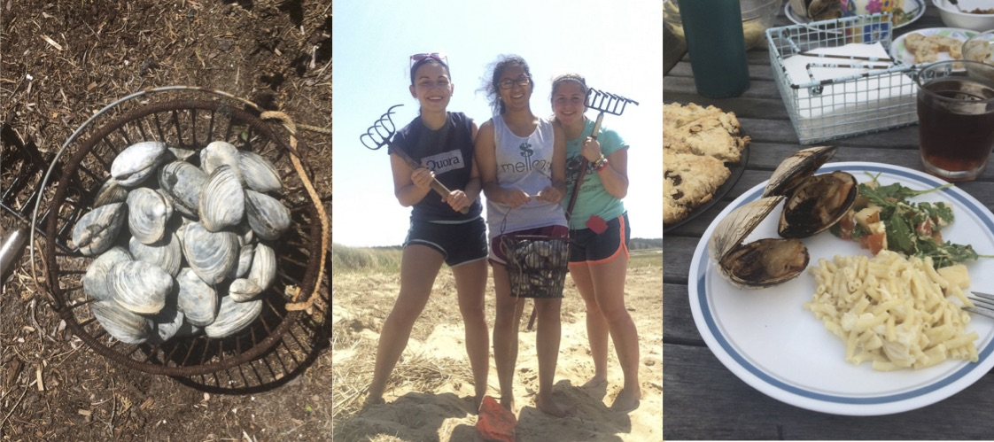 We spent an afternoon digging for clams, then grilling and eating them. A delicious and rewarding venture!