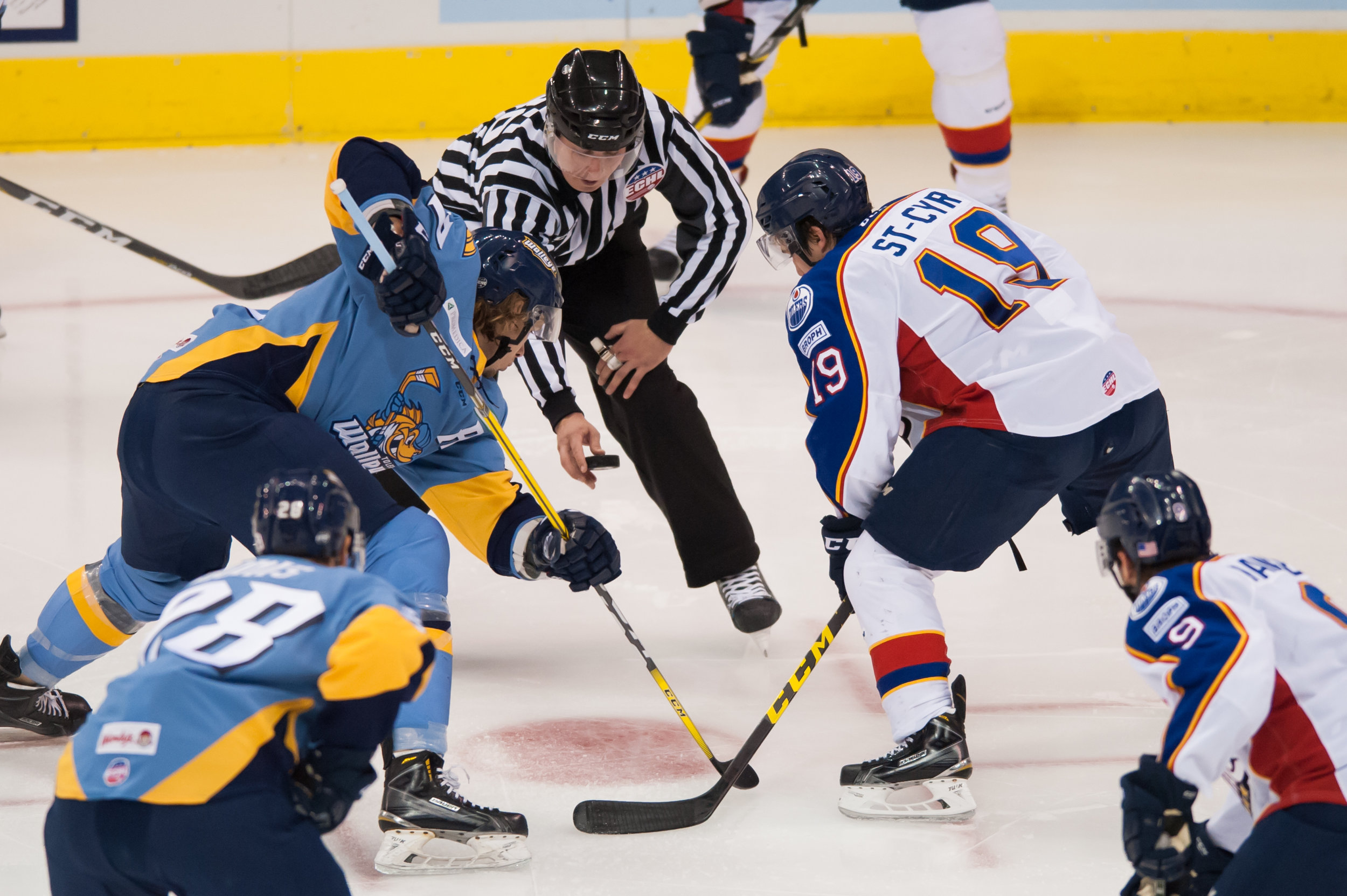 Norfolk Admirals forward Maxime St. Cyr (19) and Toledo Walleye forward A.J. Jenks (27) face off during Saturday night's game at the Scope Arena in Norfolk, Virginia. Toledo defeated Norfolk 4 to 1.