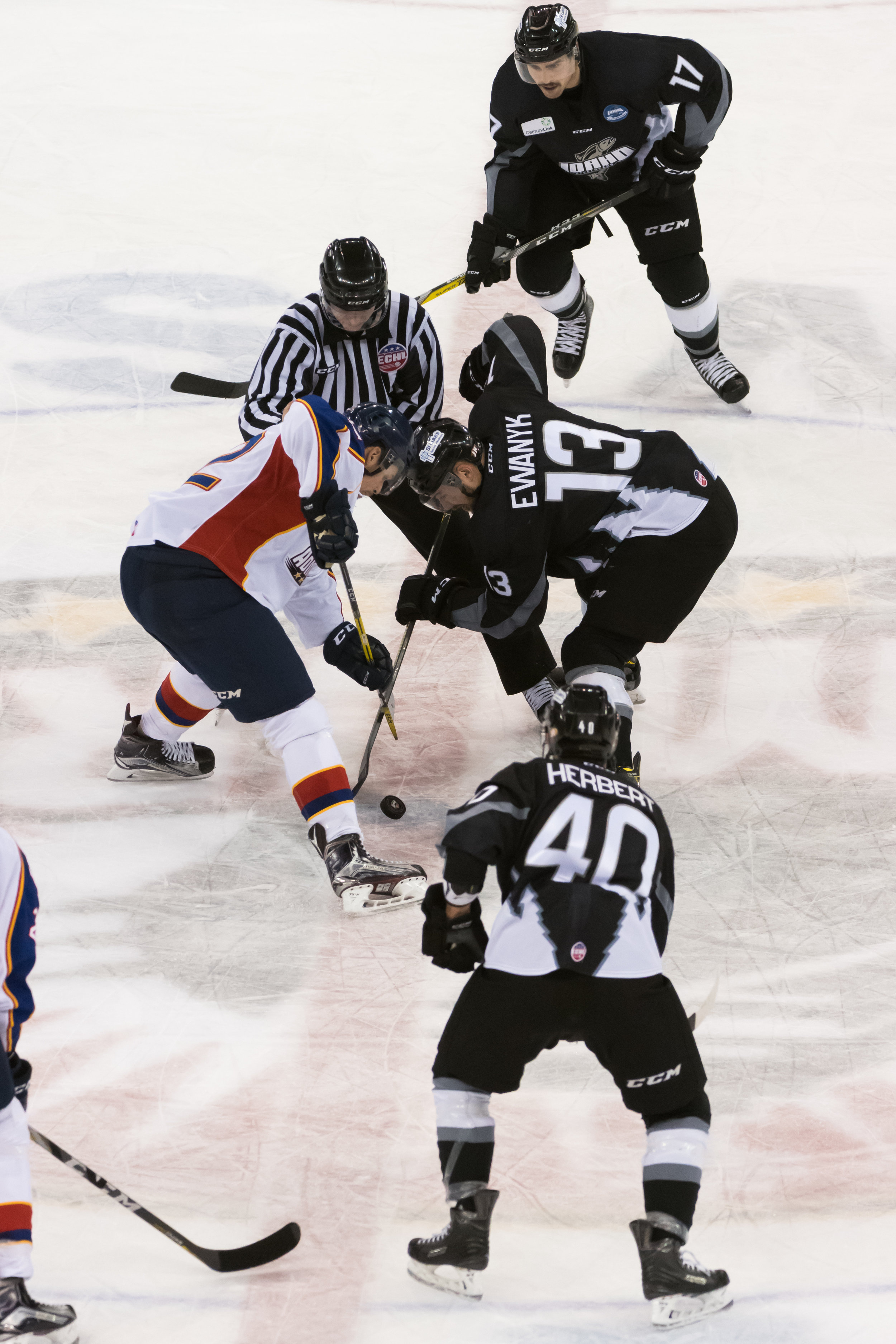 Norfolk Admirals left wing Nick MacNeil (12) and Idaho Steelheads forward Travis Ewanyk (13) face off during Wednesday night's game at the Scope Arena in Norfolk, Virginia. Idaho defeated Norfolk 6-4.