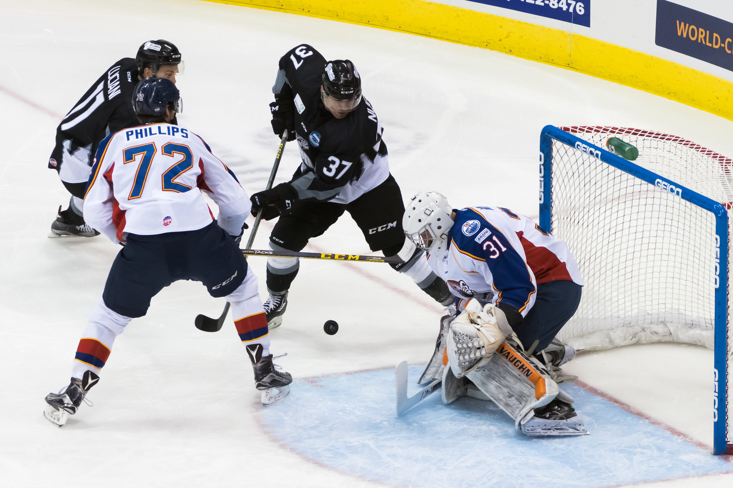Idaho Steelheads forward Brian Nugent (37) takes a shot against Norfolk Admirals goalie Connor Knapp (31) during Saturday night's game at the Scope Arena in Norfolk, Virginia. Idaho defeated Norfolk 4-1.
