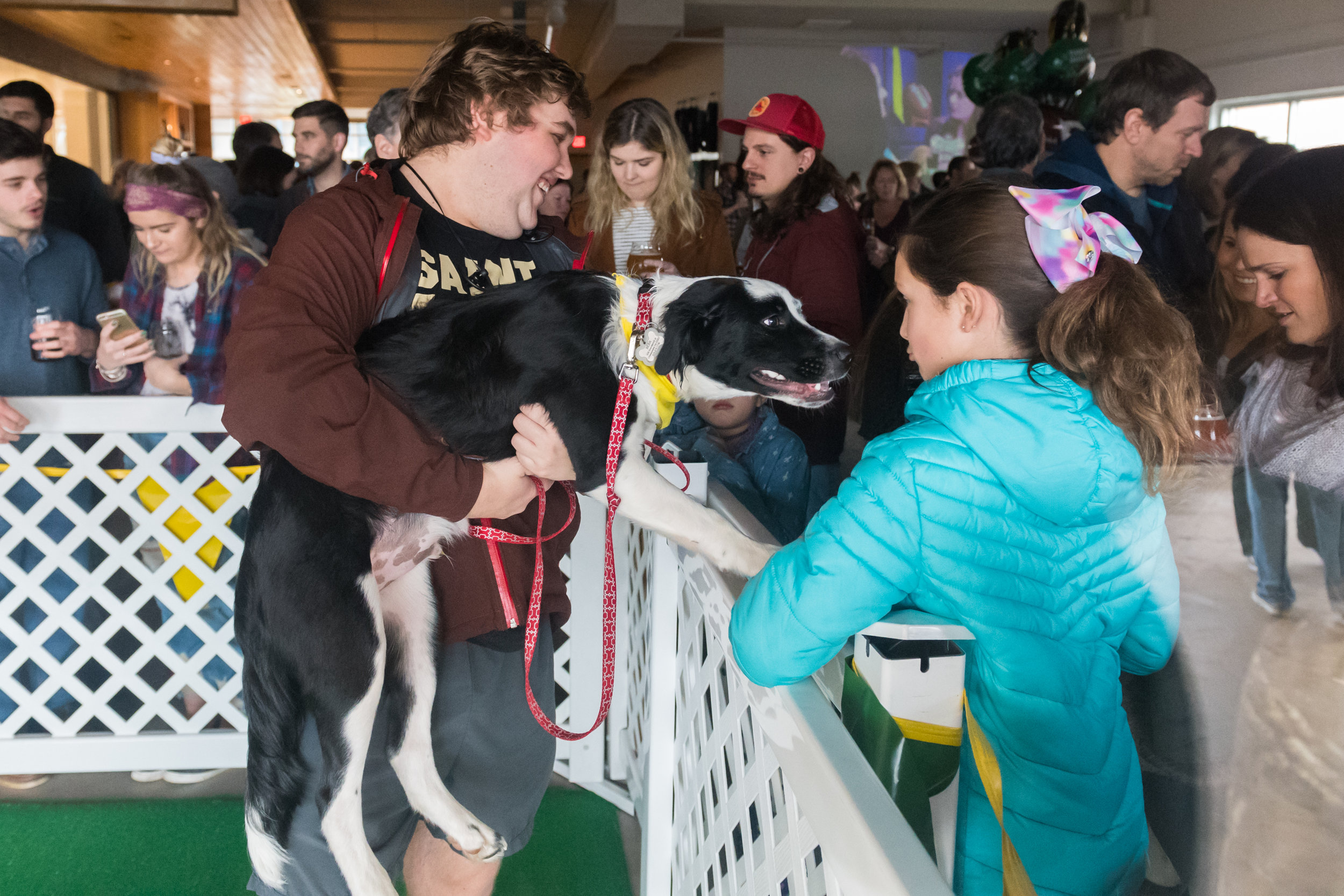 Nic Lee holds Bear up to meet fans during the Virginia Beach SPCA 2018 Puppy Bowl Tailgate Party held at Smartmouth Pilot House Sunday, February 4, 2018. Bear was awarded MVP, Most Valuable Puppy, at 14th annual Animal Planet Puppy Bowl.
