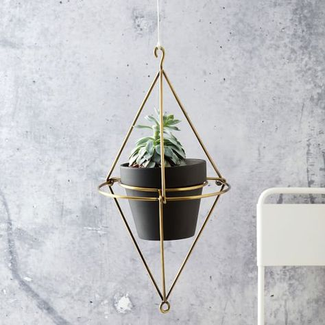 Hanging Planter -West Elm