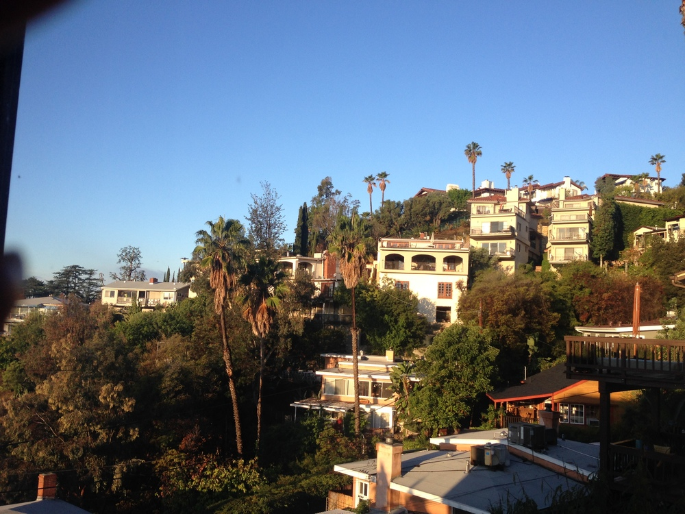 Gorgeous view of the Hollywood Hills from my bedroom