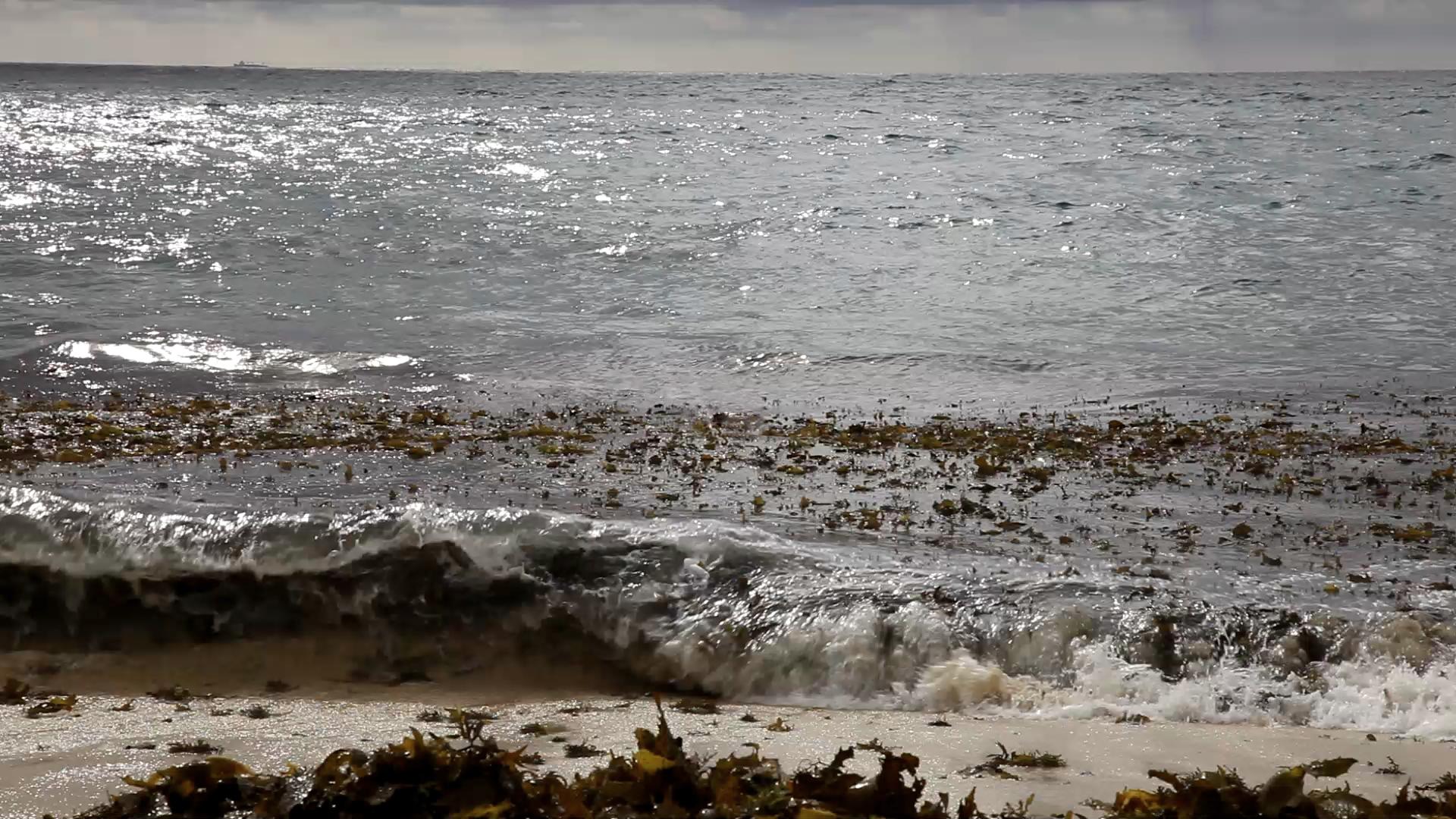 Still from Ocean video projection