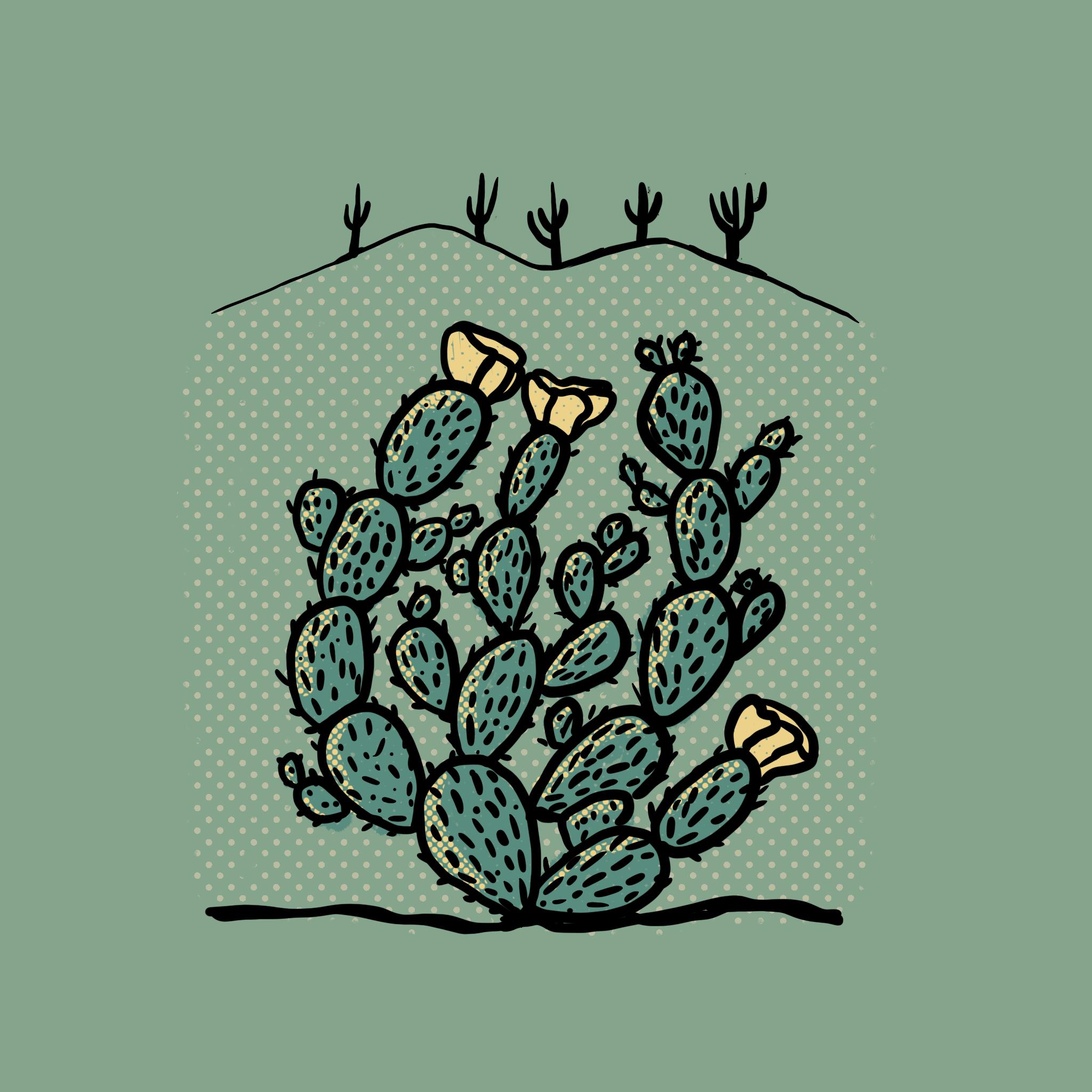Cactus_Series_-_08.png