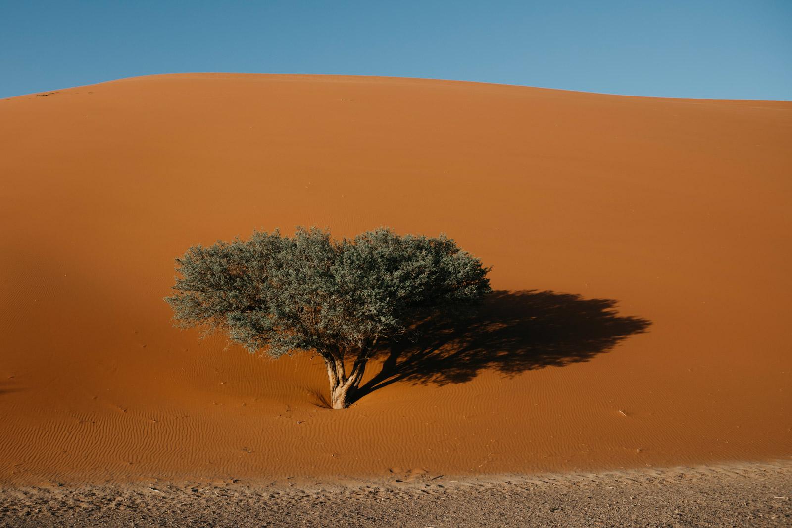 namibia_trip_rooftent_camping_roadtrip (14 von 26).jpg