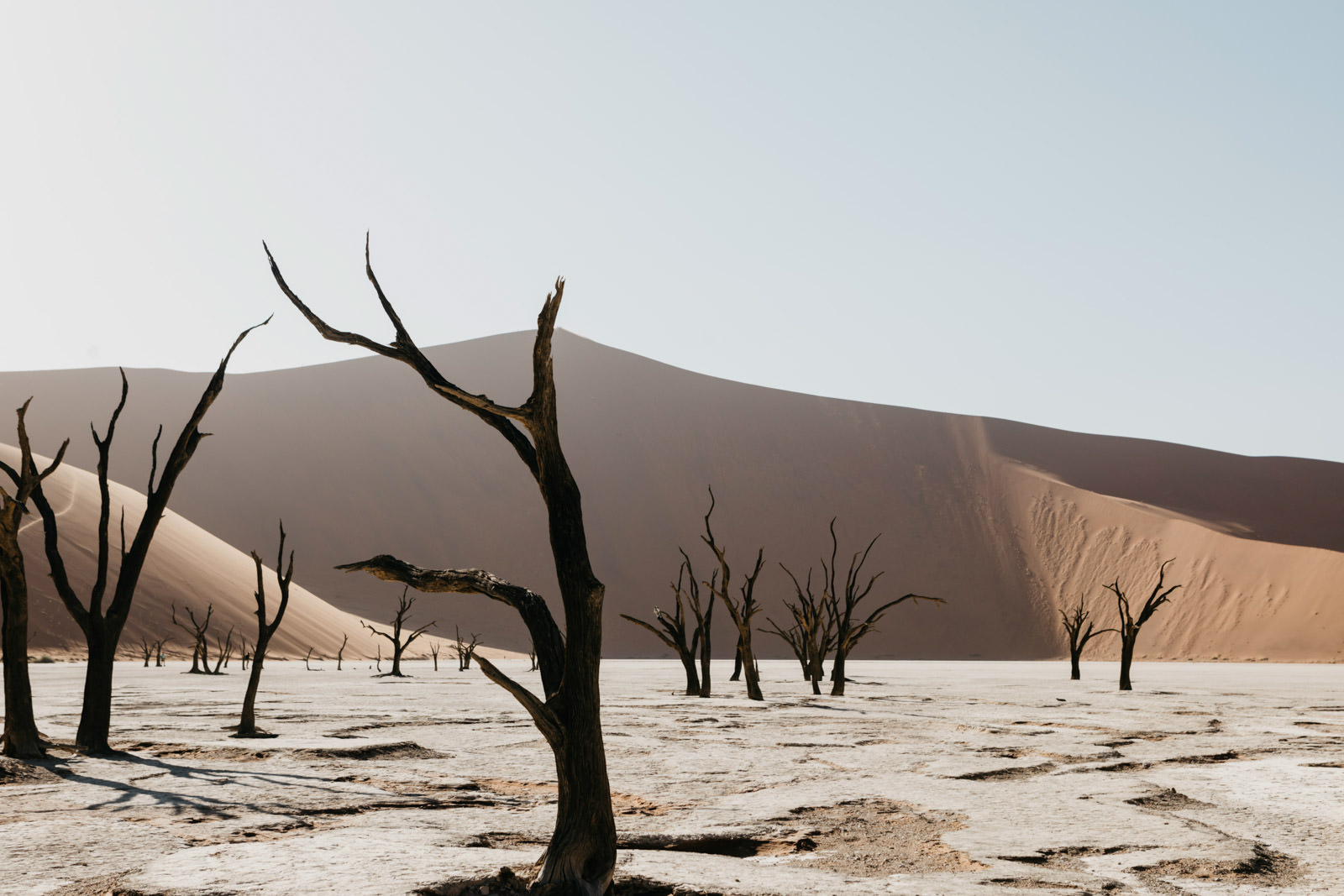 namibia_trip_rooftent_camping_roadtrip (16 von 26).jpg