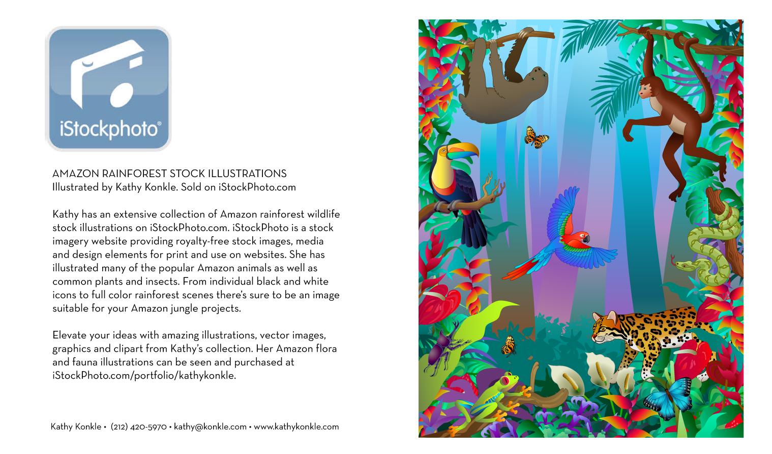Rainforest-Animals.jpg