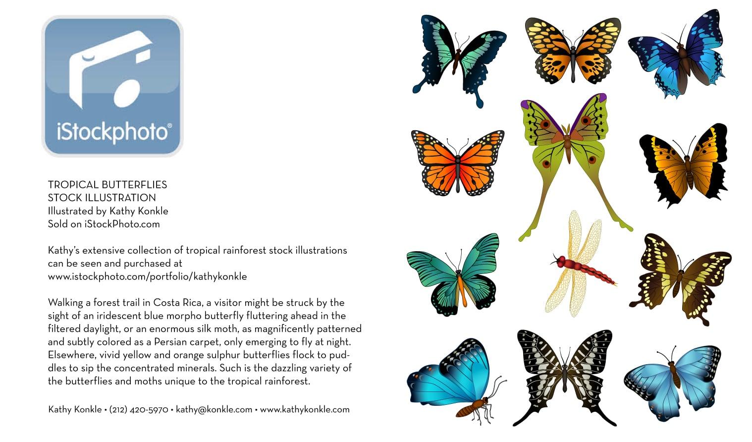 Istock-Butterflies.jpg