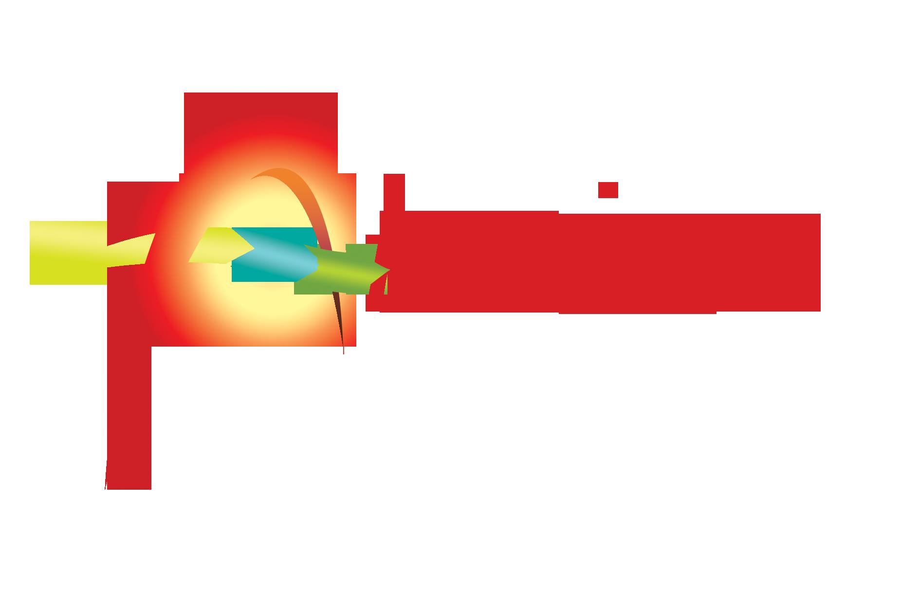 ALESION.png
