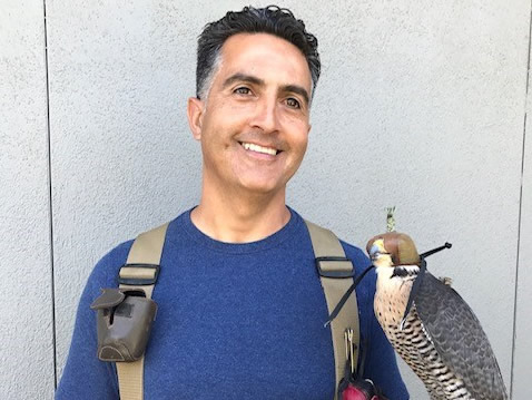 George & falcon - cropped.jpg