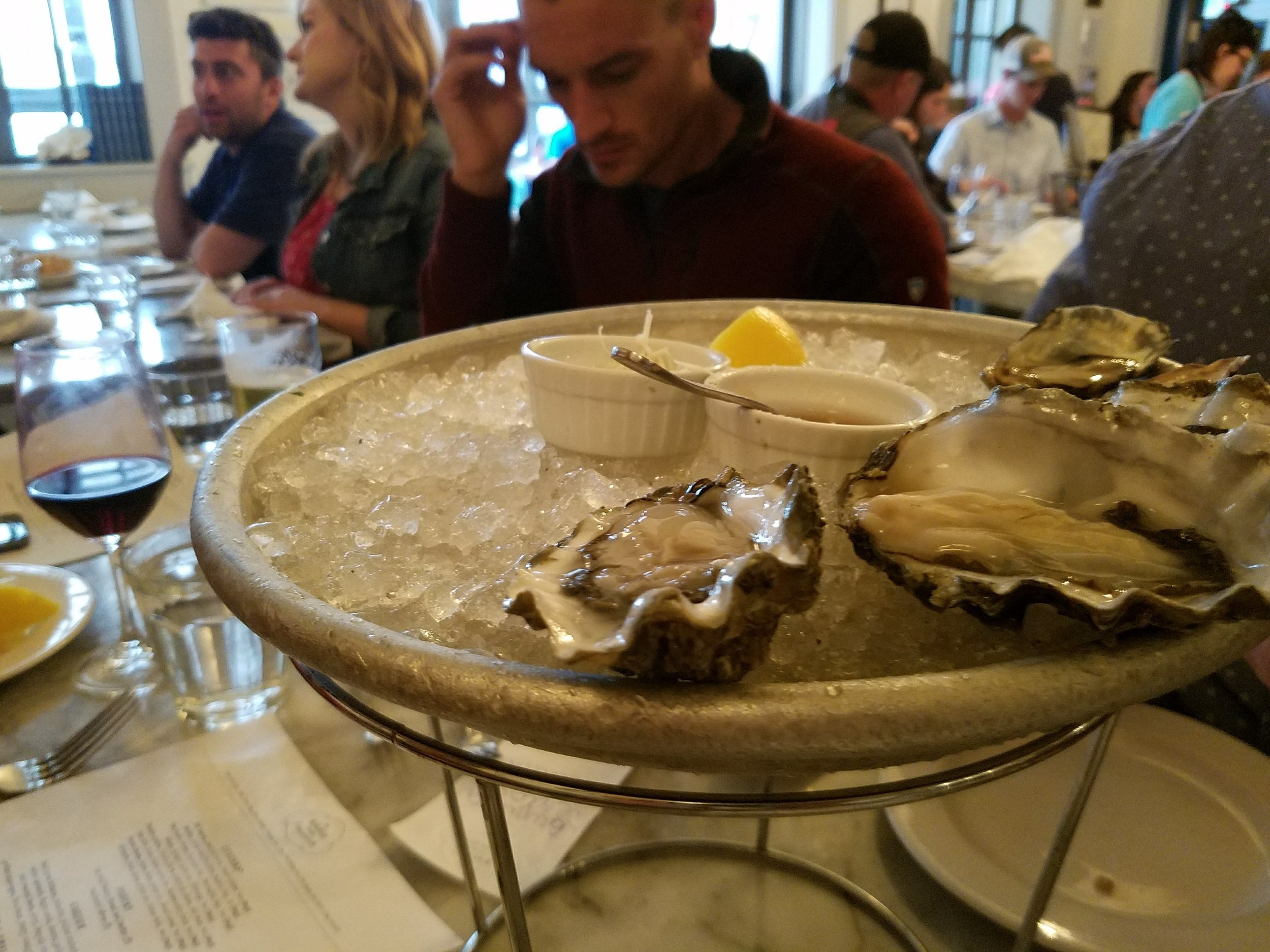 $16 oysters