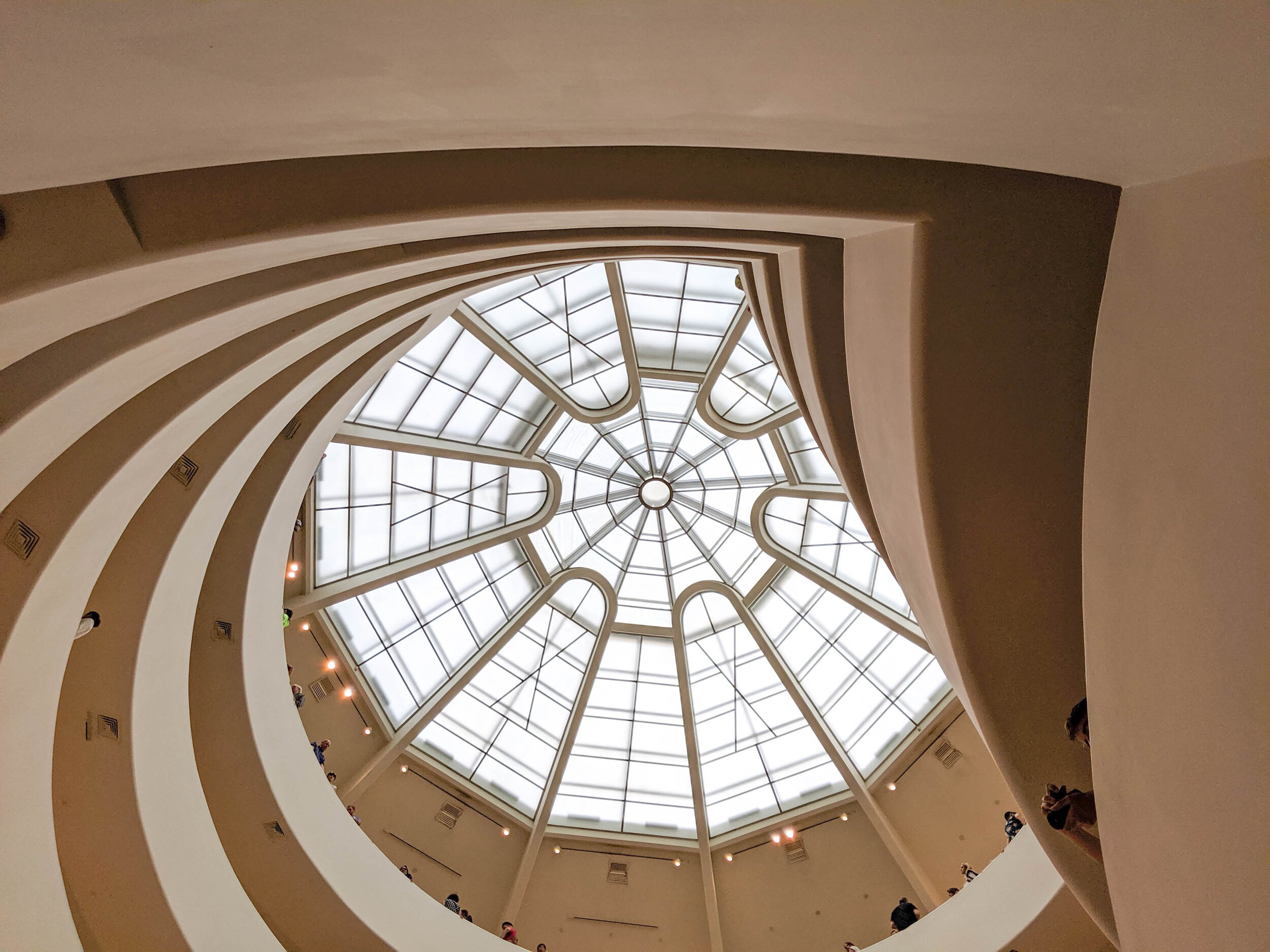 Looking up | The Guggenheim