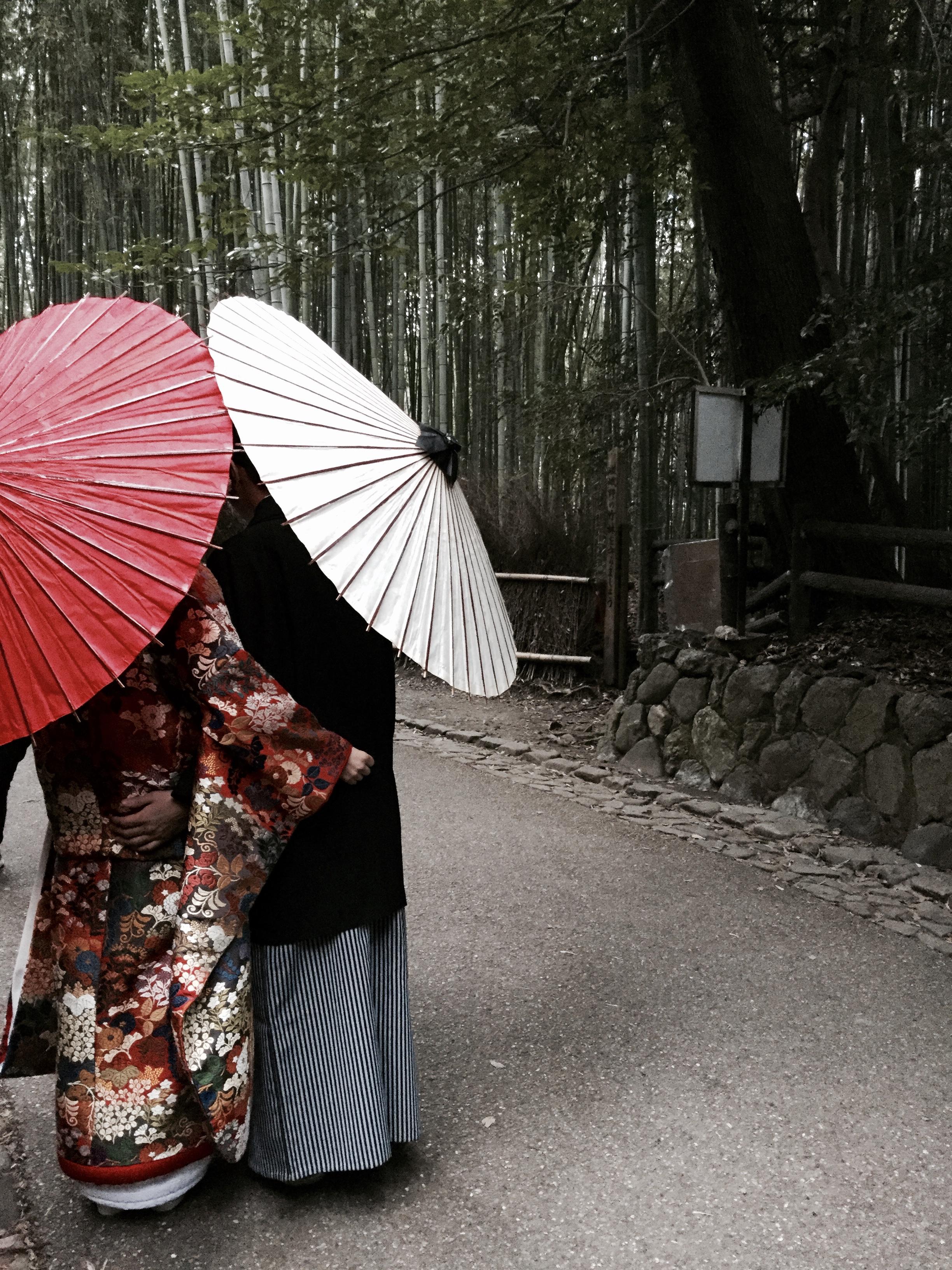 Arashiyama's bamboo forest.
