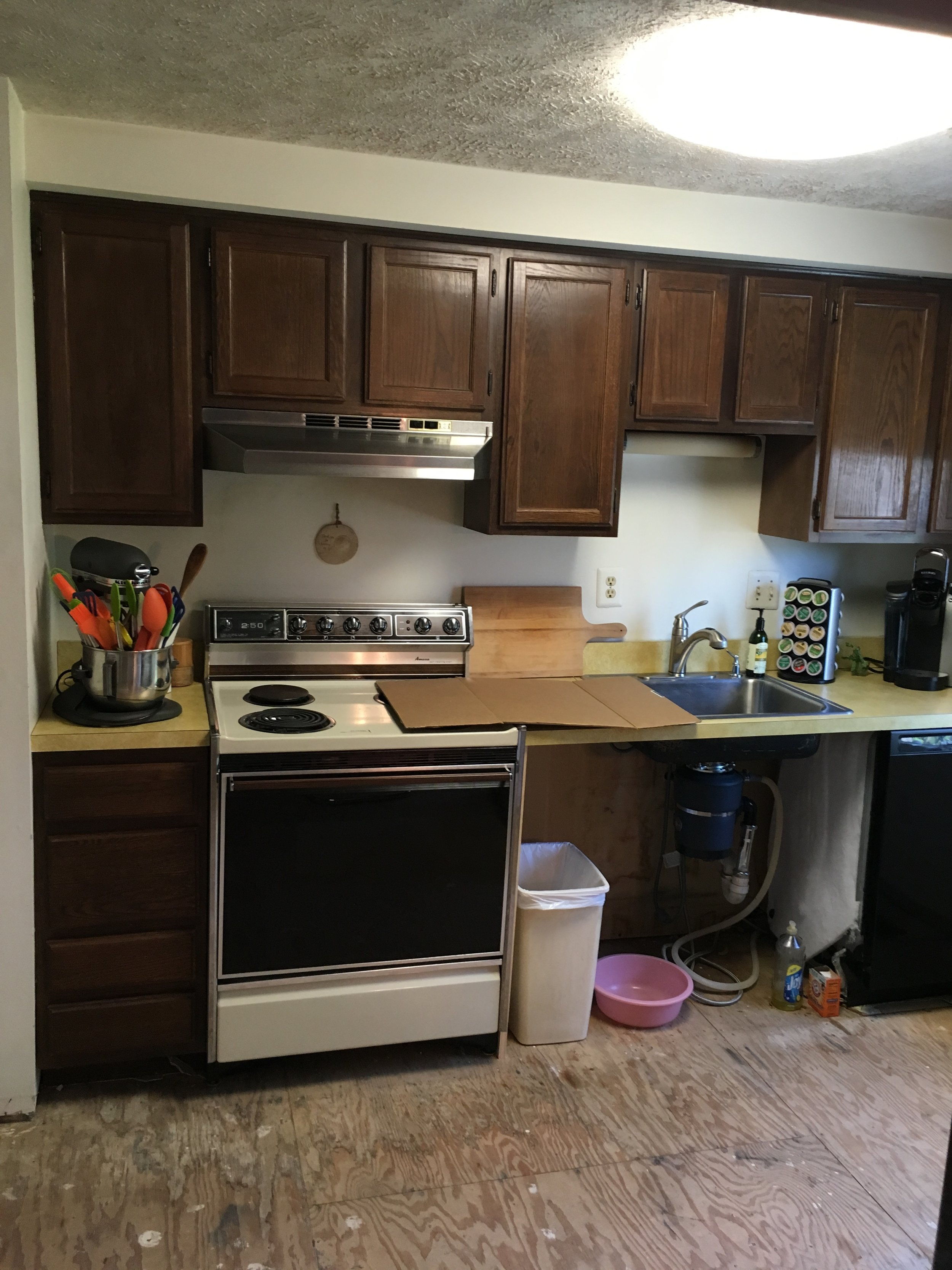 Kitchen (the leak really ruined it)