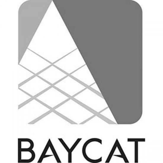 BAYCAT-Logo1-550x550.jpg
