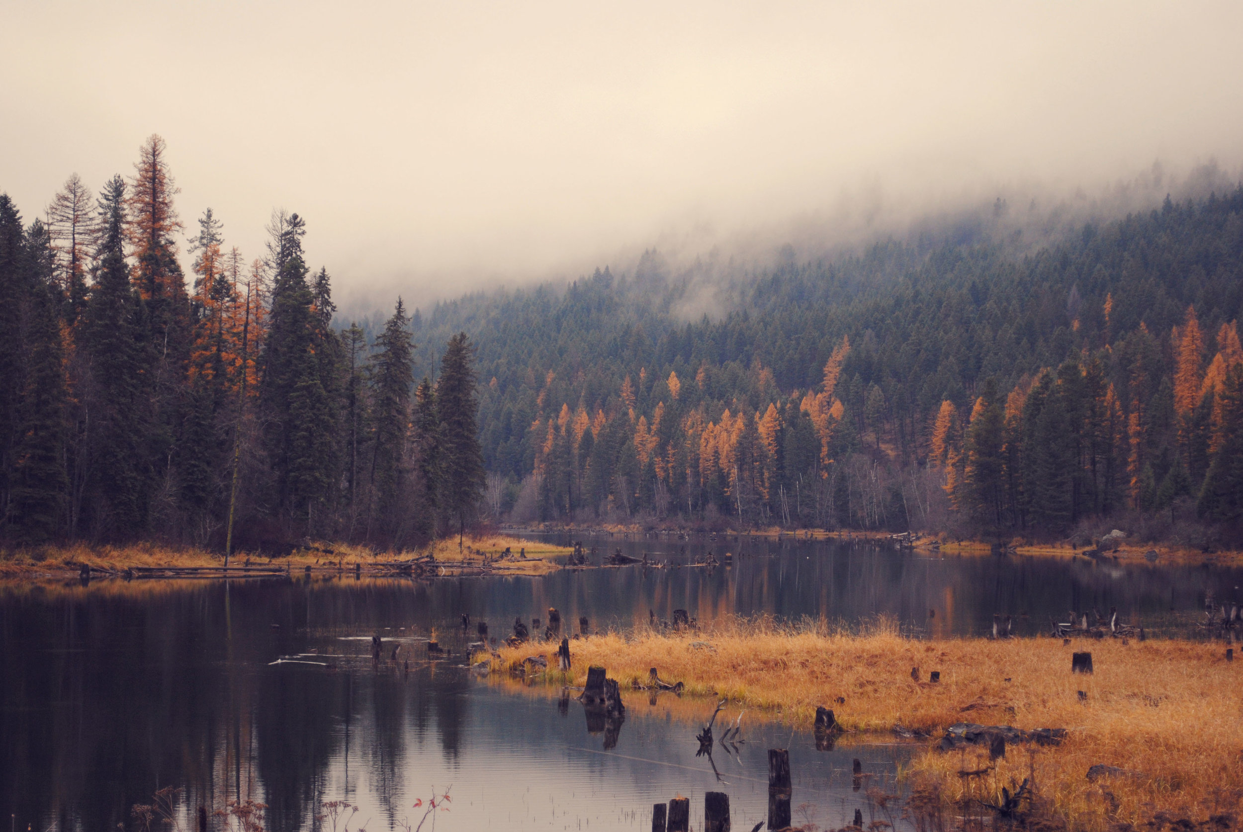 One of my favorite places I have lived during the fall, at the Swan River in Montana.