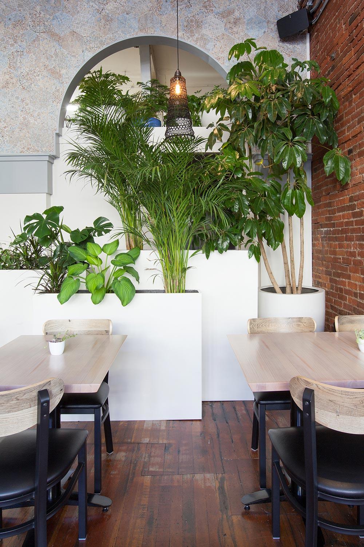 edda_trees_restaurant_01.jpg