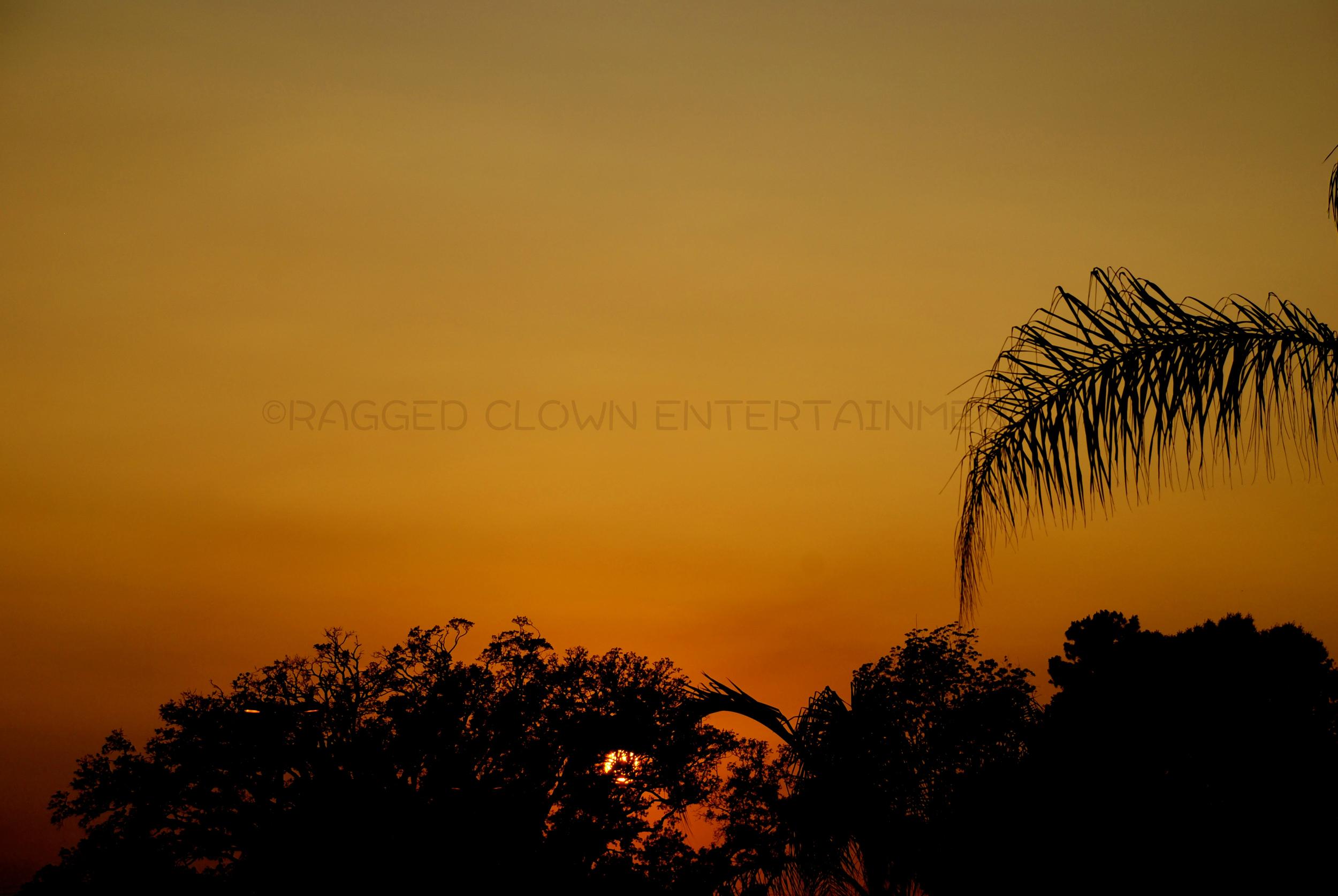 sunset louisiana2WM.jpg