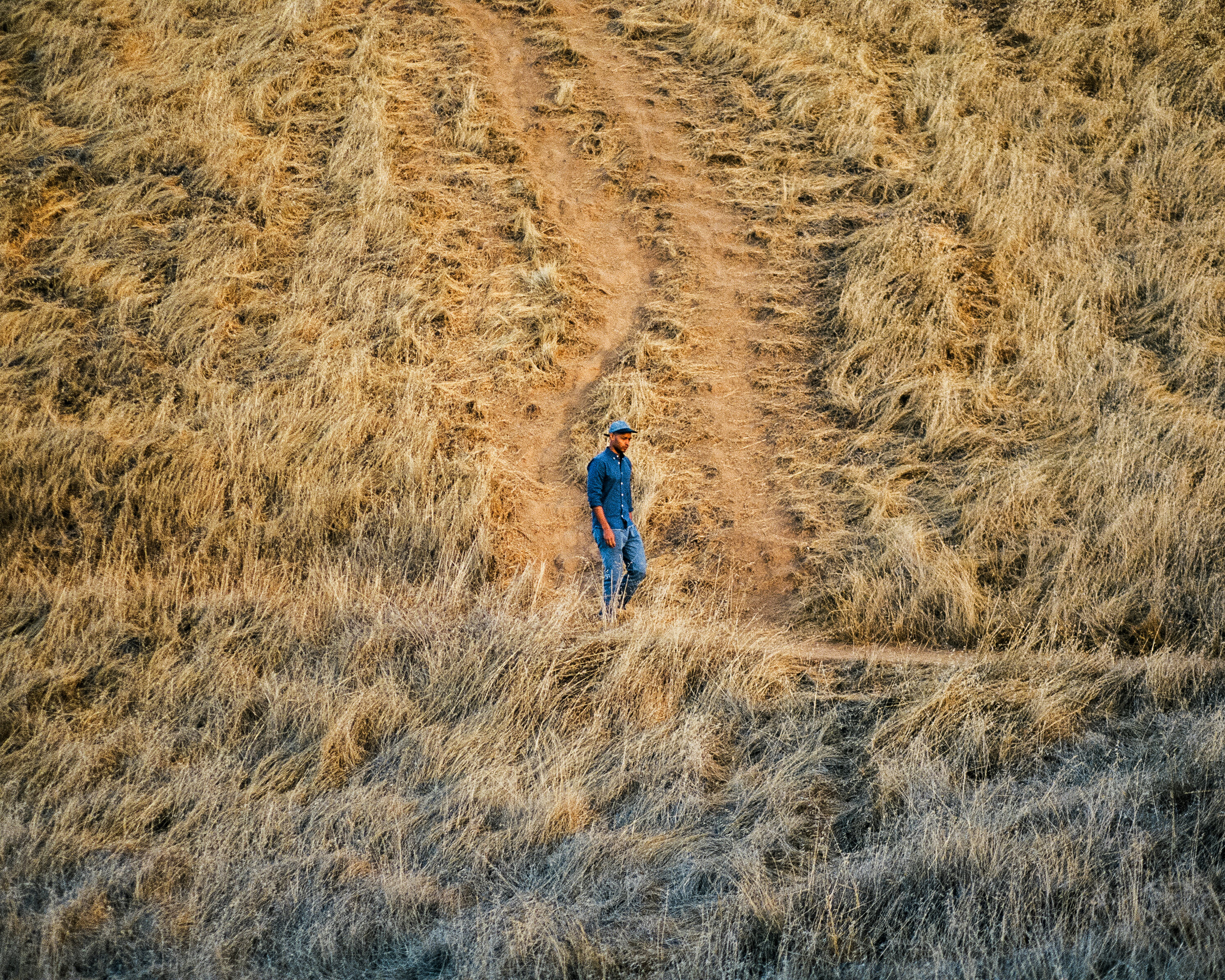 mount_tamalpais_trail_