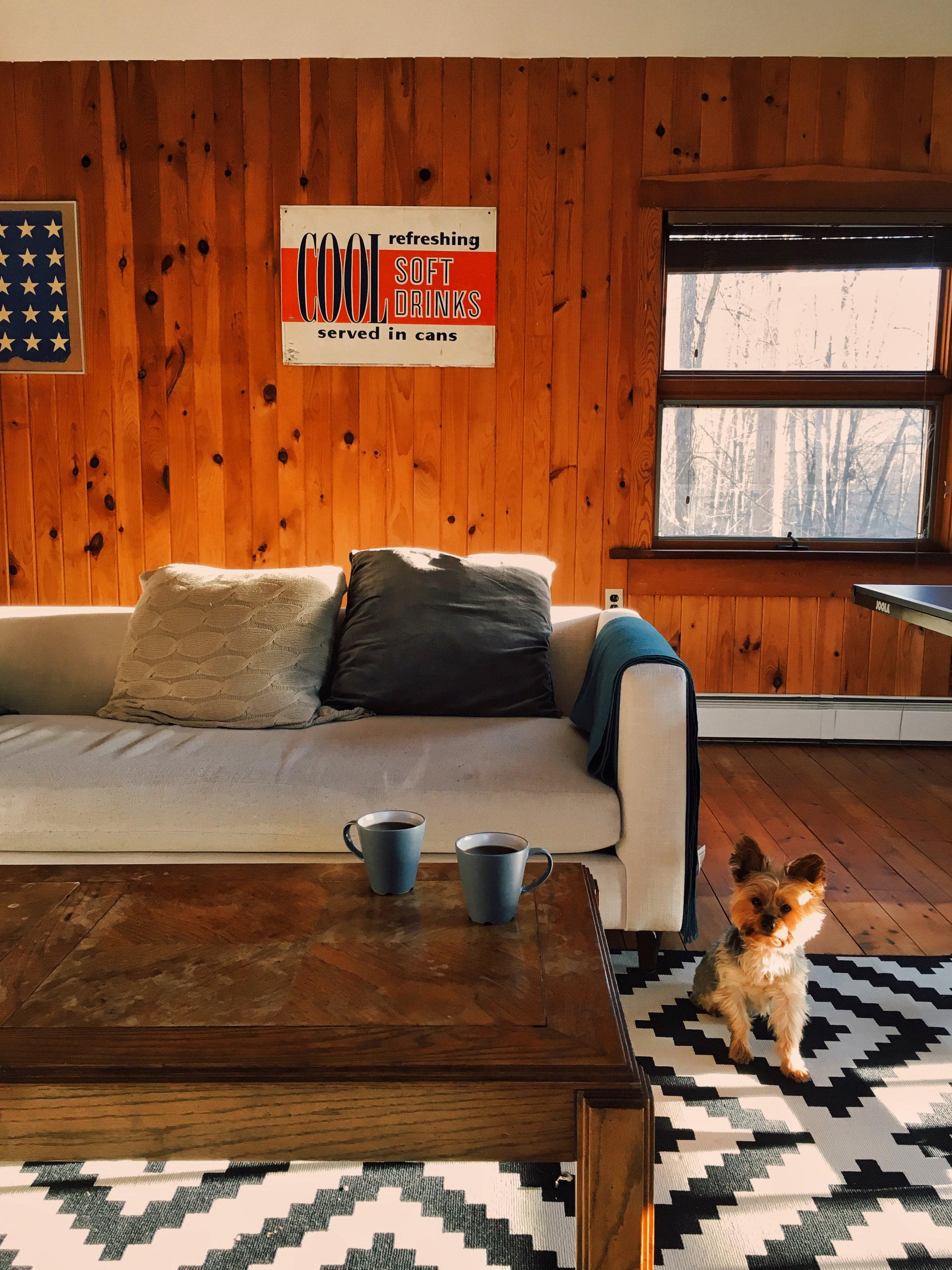 flatrock house game room yorkie
