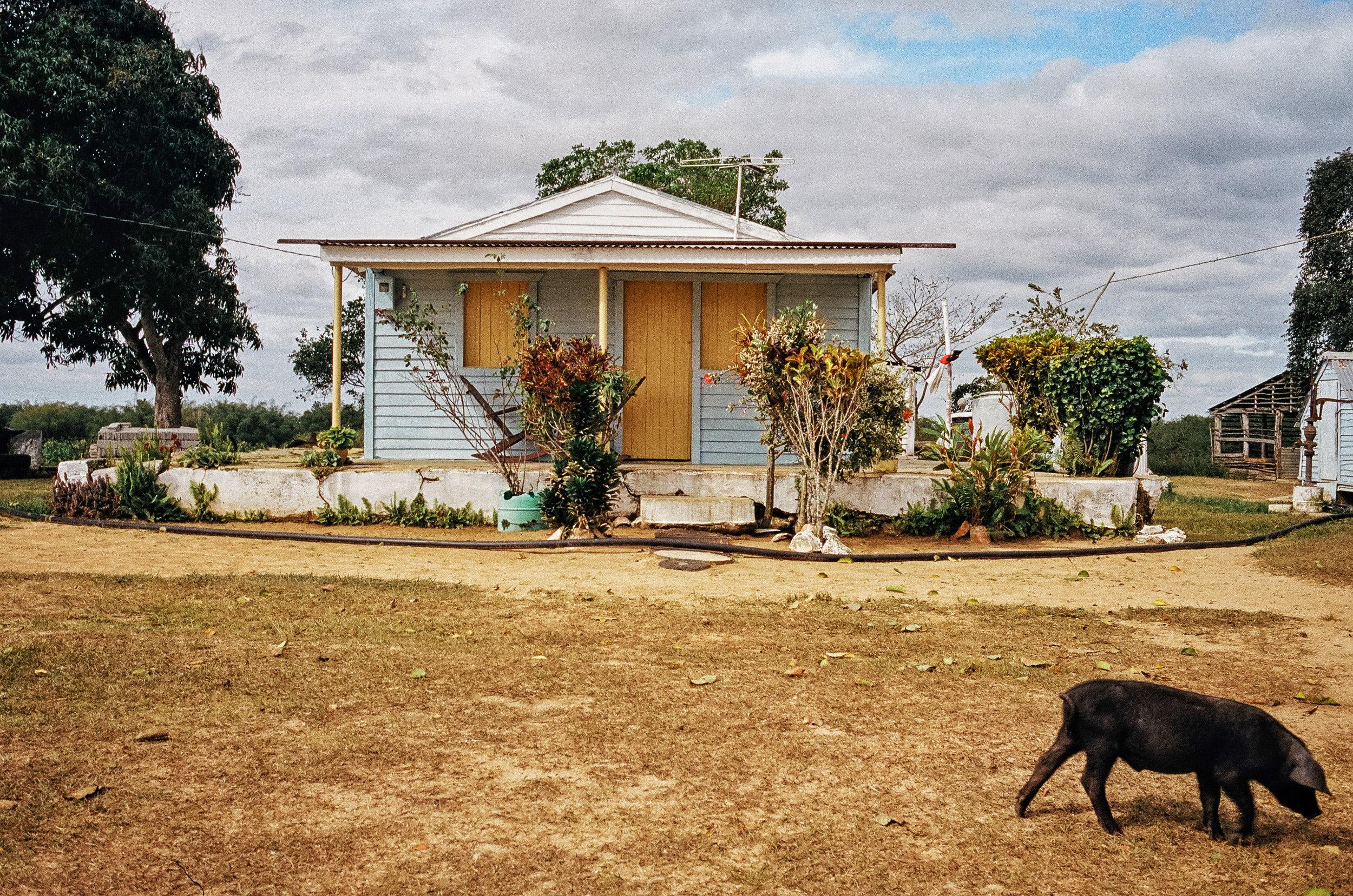 house in vinales