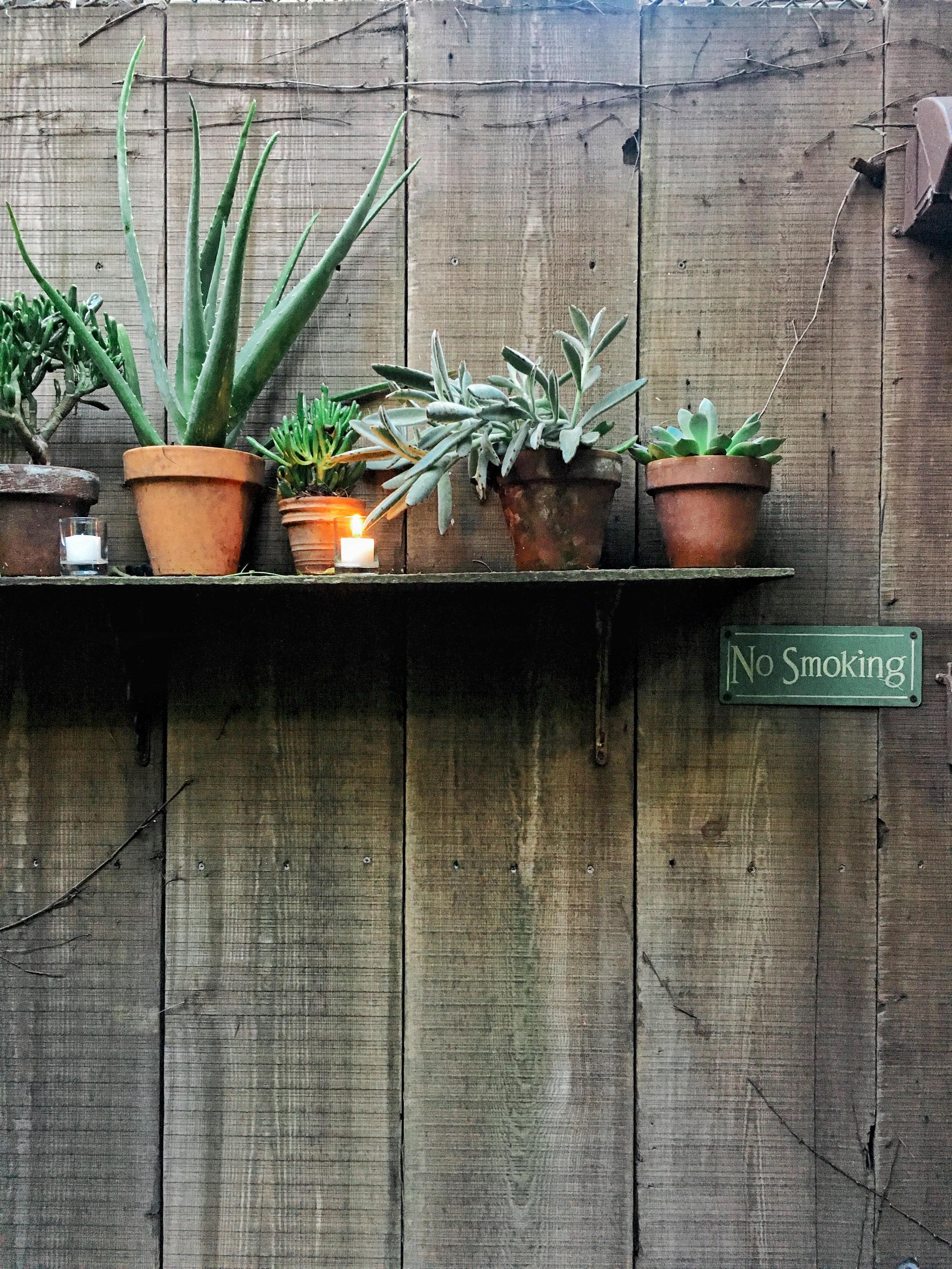maison premiere garden