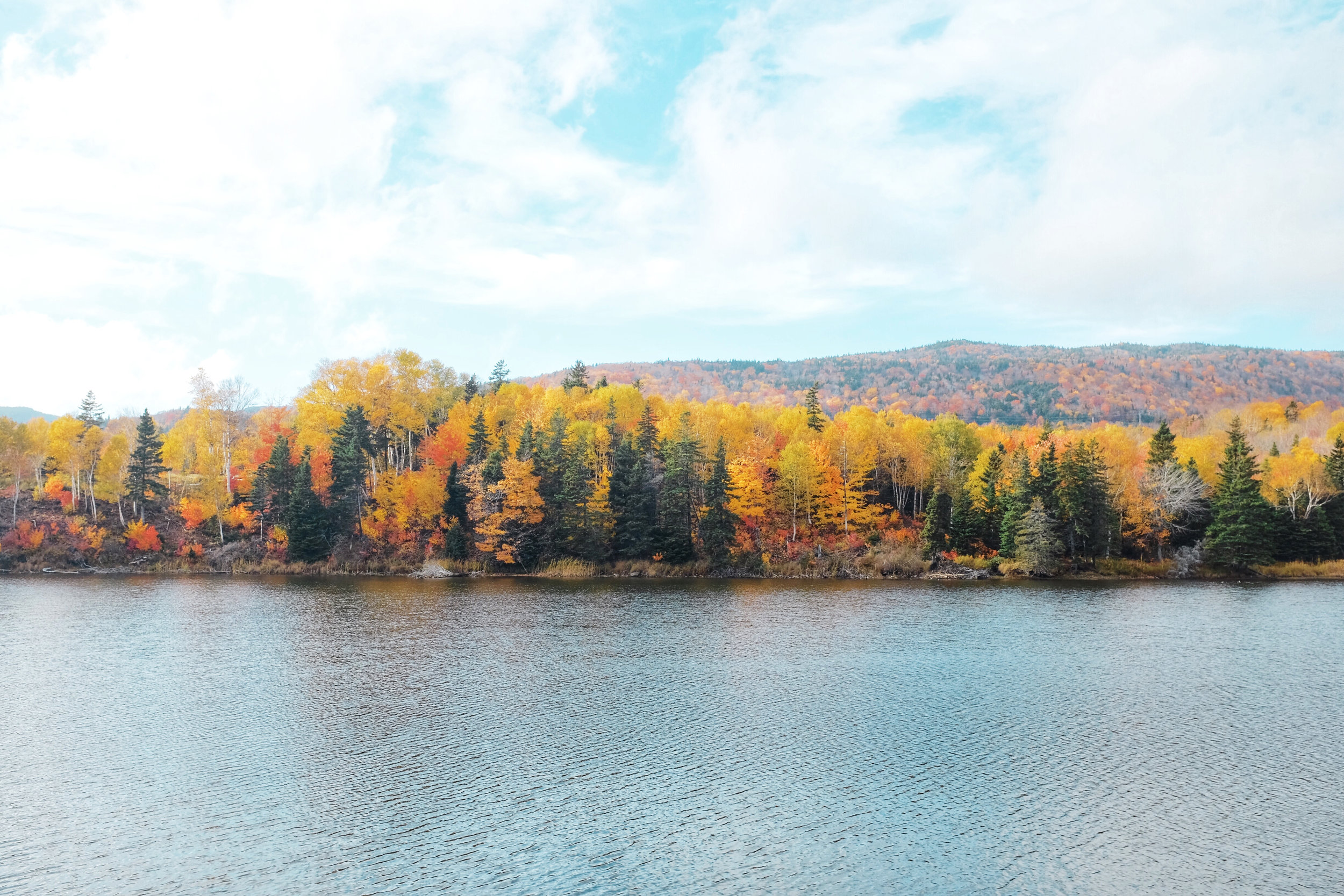 fall on the cabot trail