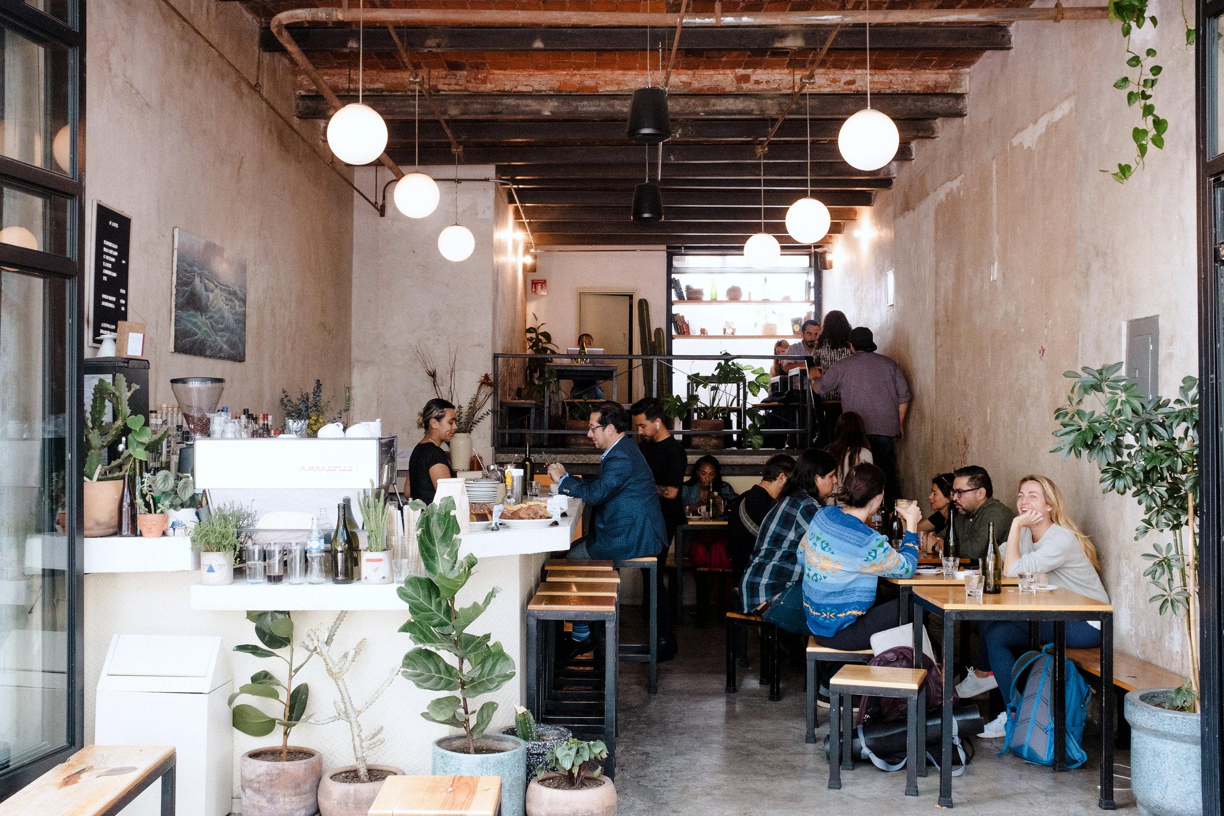 cicatriz cafe mexico city