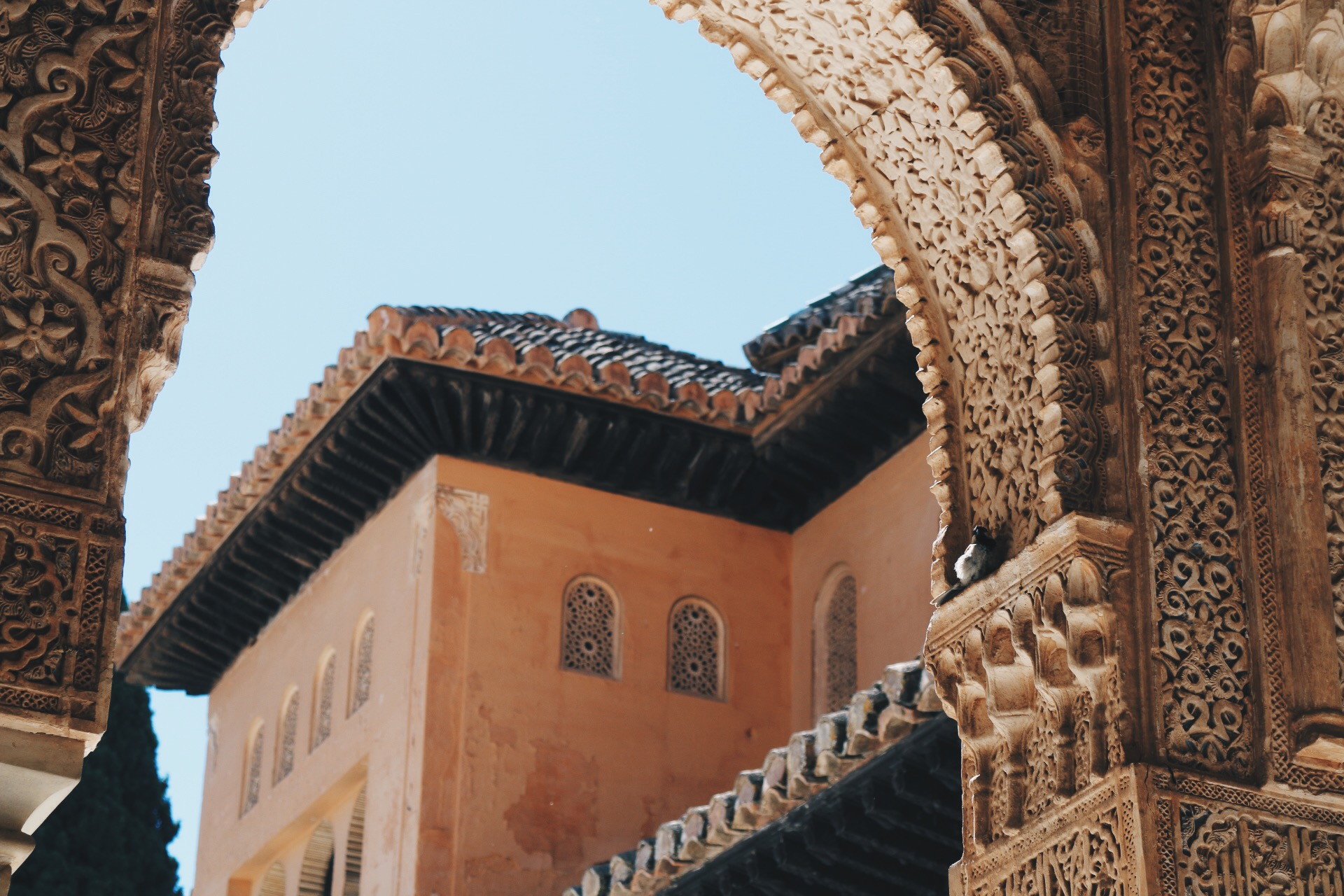INTRICATE PALACE ARCH GALORE AT ALHAMBRA