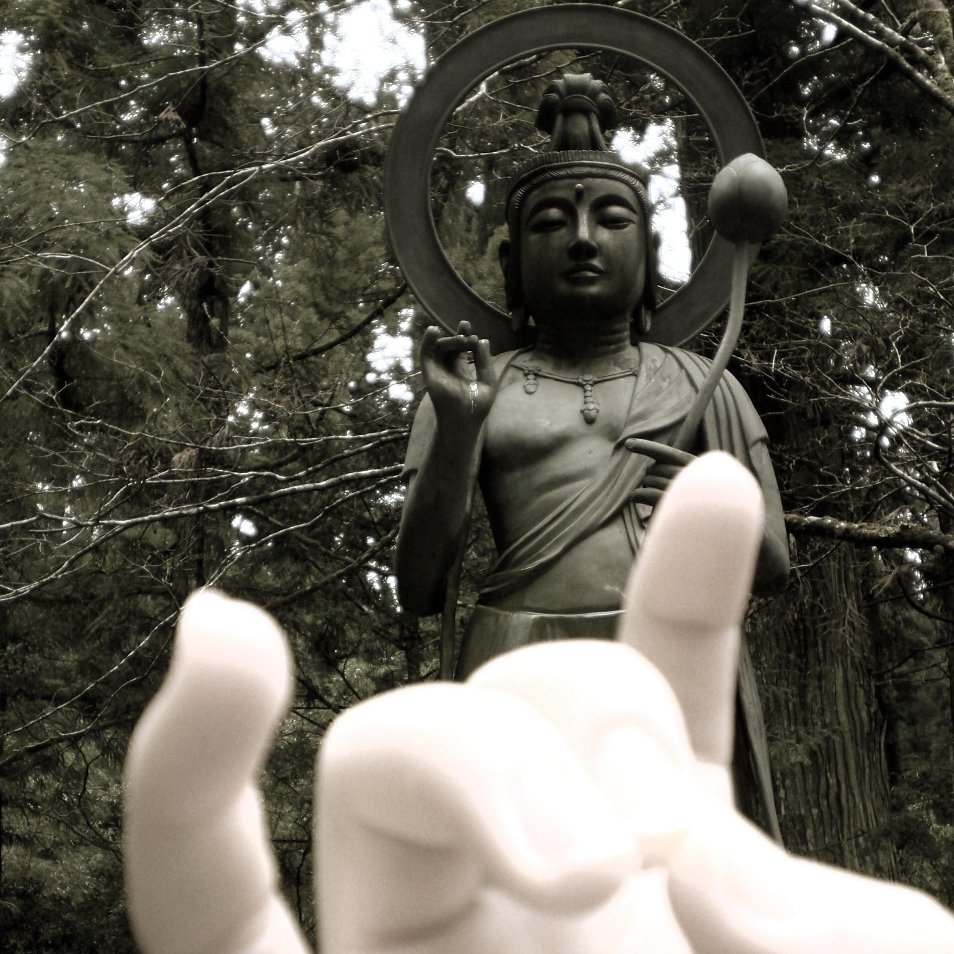 hand and buddha.JPG