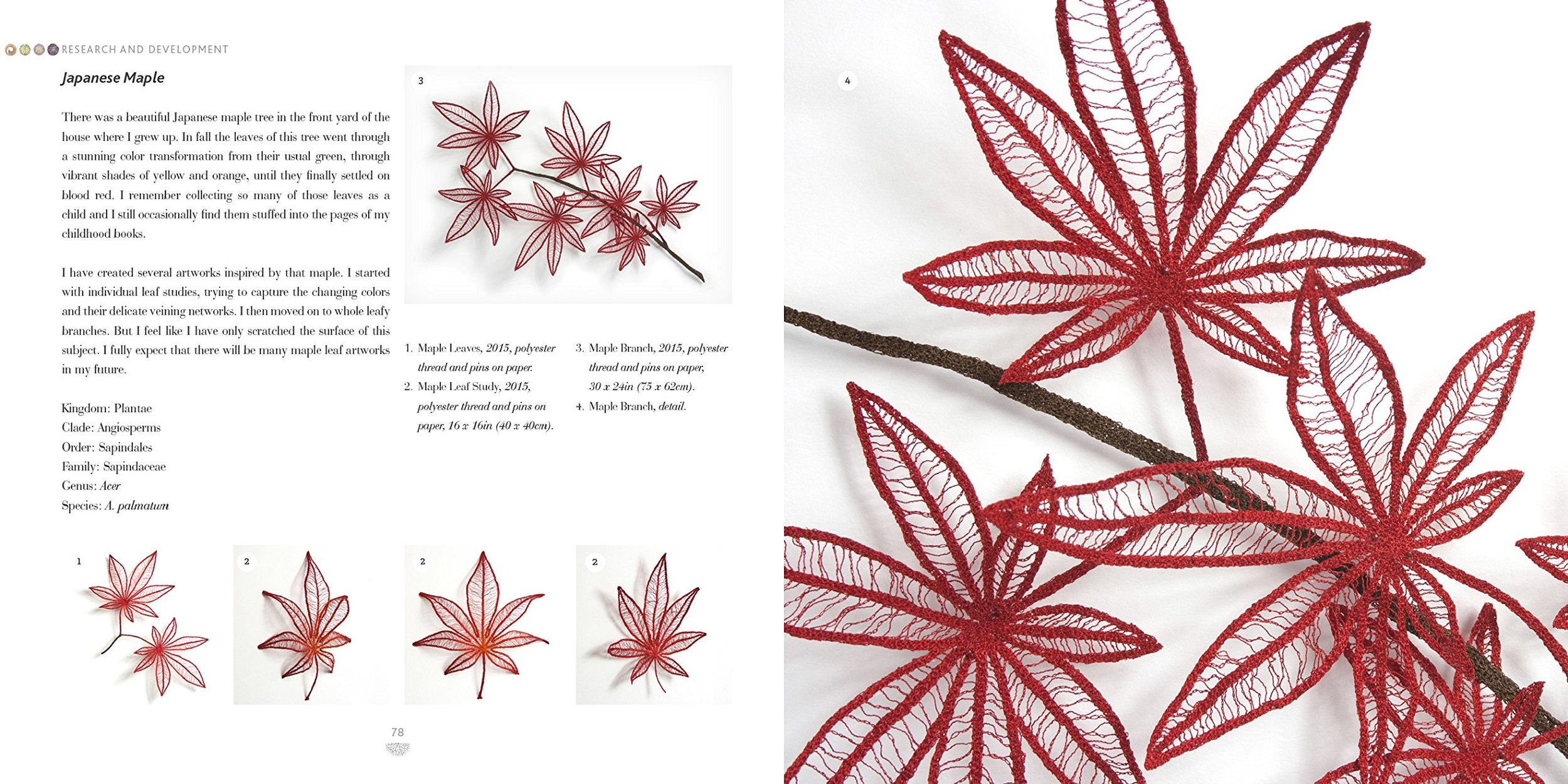 Organic embroidery Meredith Woolnough sample page 1.jpg