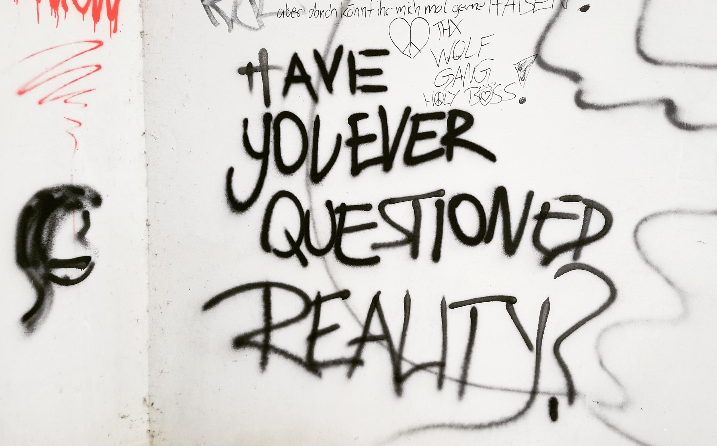 Have you ever questioned reality?