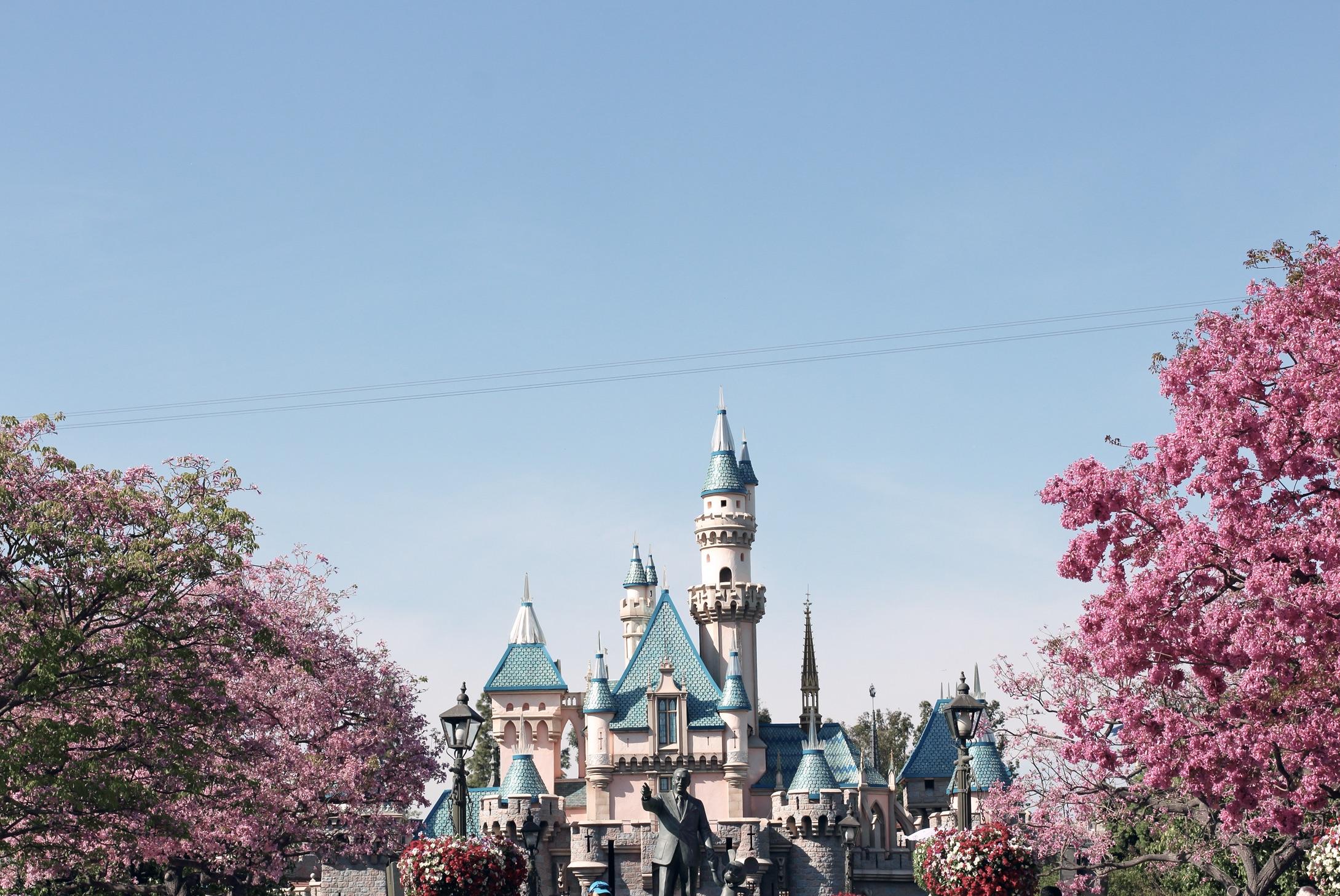 Castle Photo by Sharon Litz (@sharonlitz).