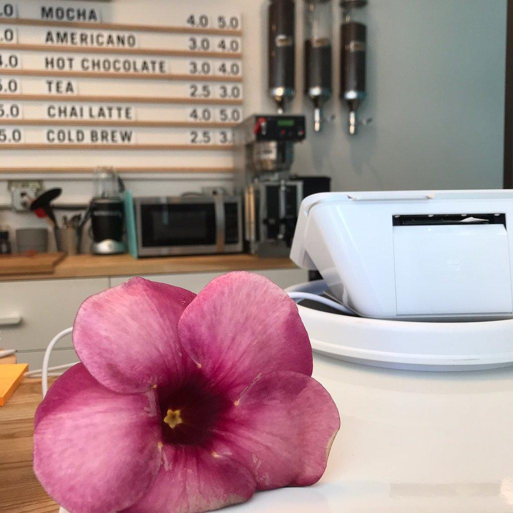 cafe-moka-islamorada.jpg