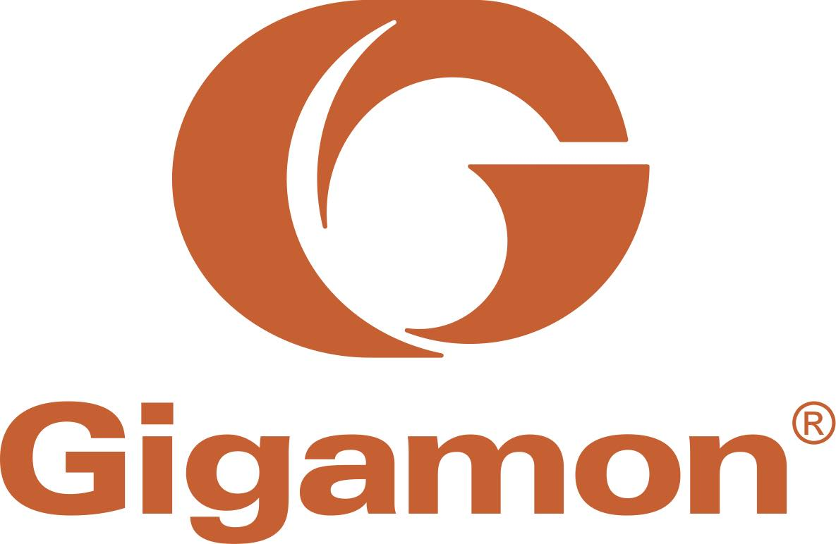 Gigamon-Free-Standing-Orange-Logo.jpg