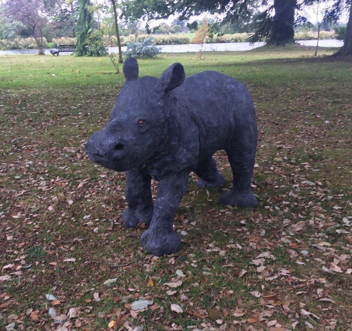Roberta the baby rhino