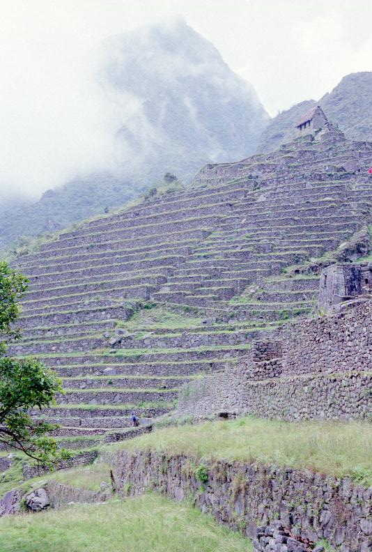 Machu PIcchu terraces