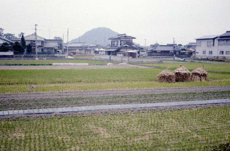 Hagi, looking towards the castle