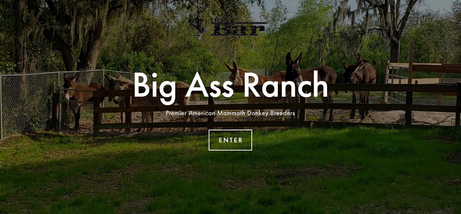 The Big Ass Ranch