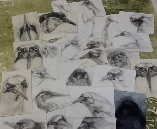 1- MyBeginnings- collage of bird drawings.jpg