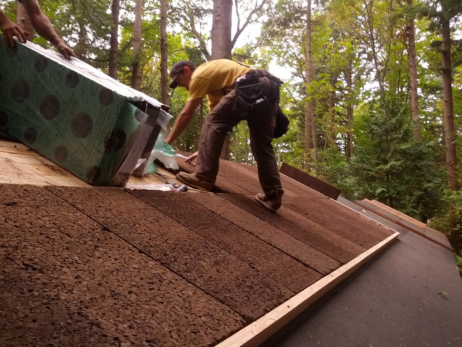 bundle design studio_ eliza island cabin_roof ins instal.jpeg