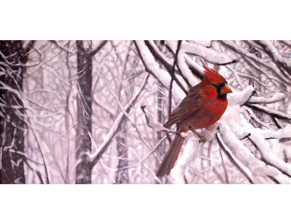cardinal 2E.jpg