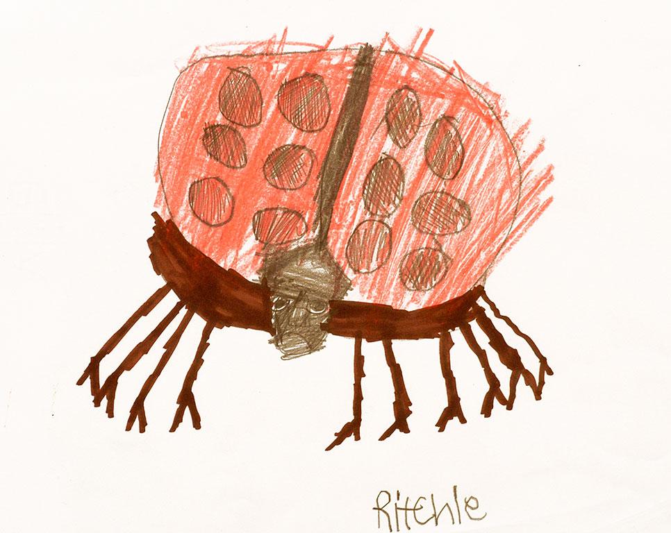 Ritchie-ladybug.jpg