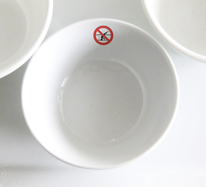NO DIVING BOWL