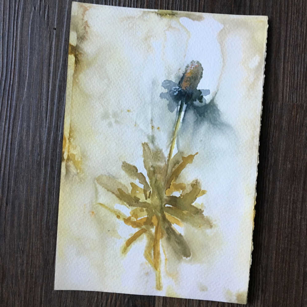 Eco-printed paper using narrow-leaf zinnia. Enhanced with watercolor.