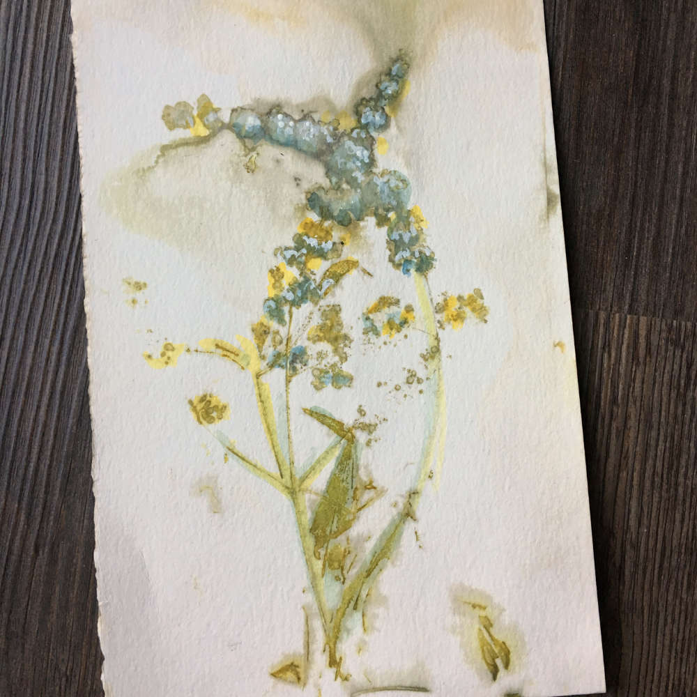 Eco-printed paper using chaste plant with watercolor enhancement
