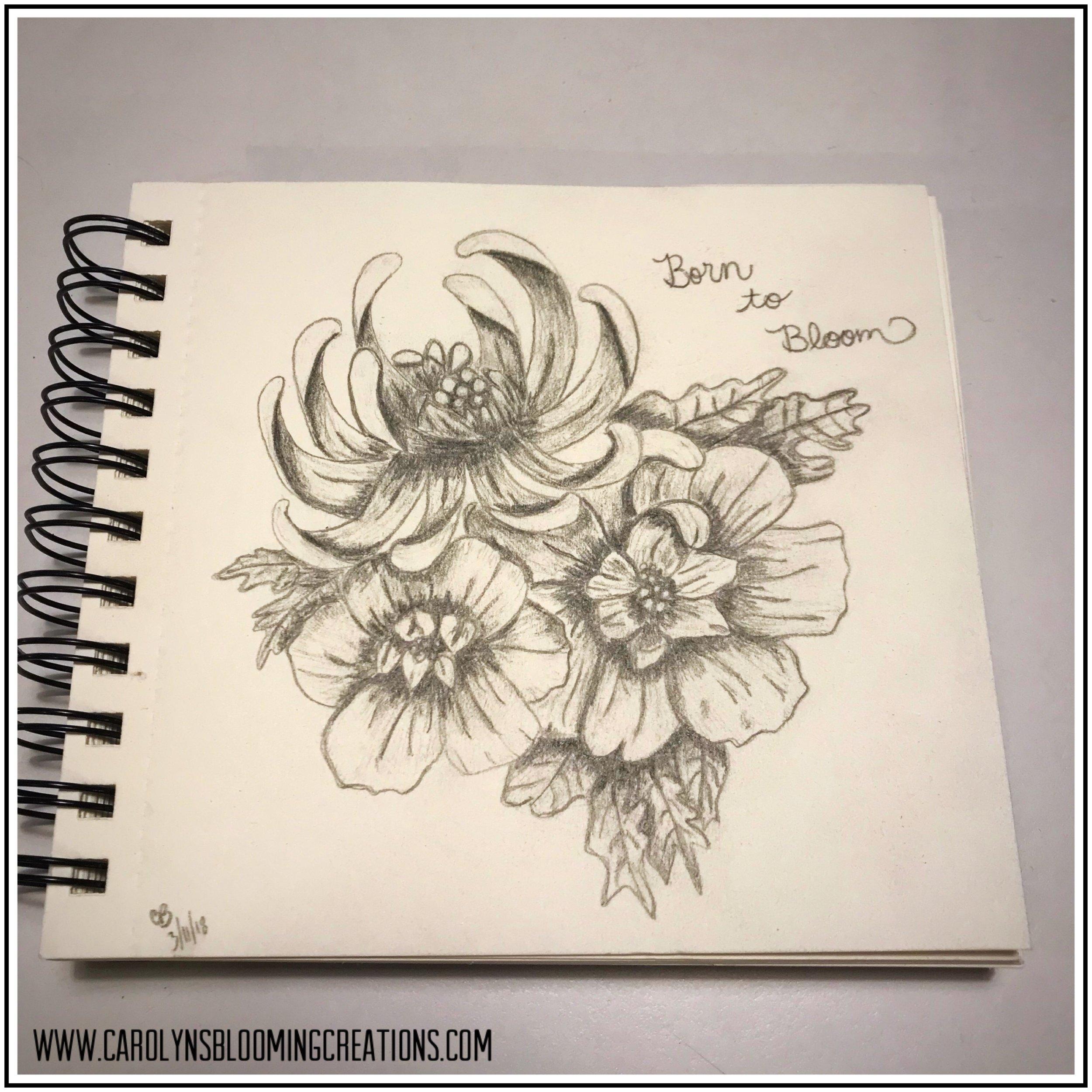 Sketch by Carolyn J. Braden: Born to Bloom