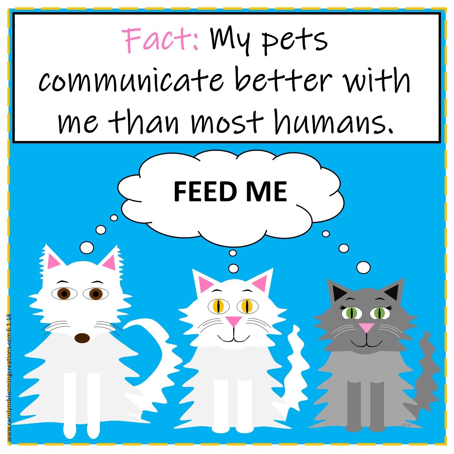 Carolyn Braden Bad Communication friday funny cats.jpg