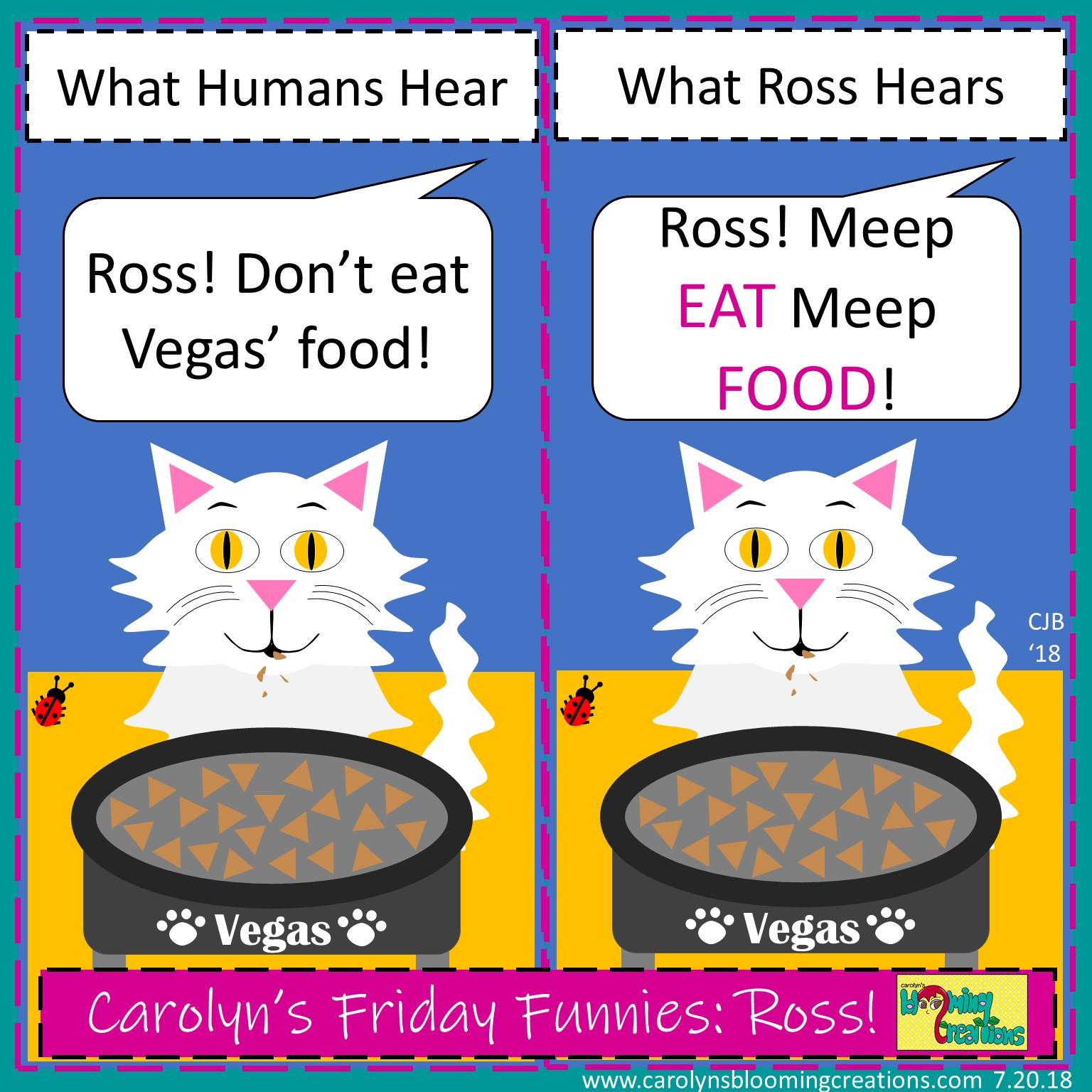 Carolyn Braden friday funny Ross.jpg